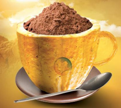 image cacao tafissa